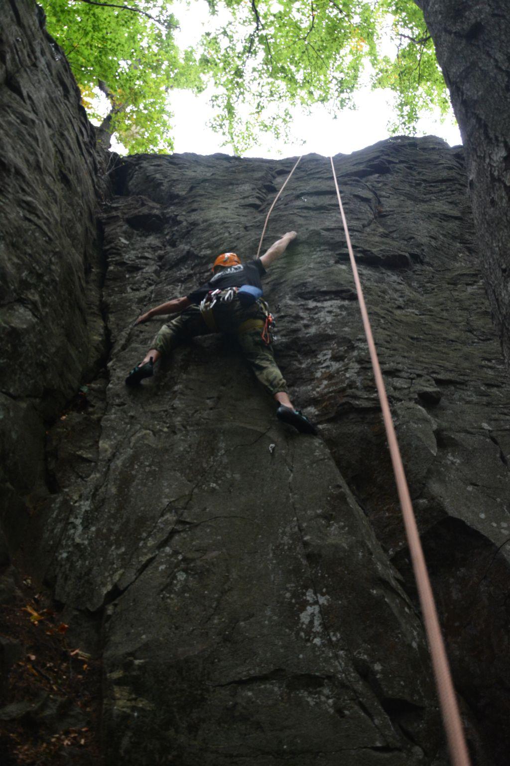 Ďoďo lezie